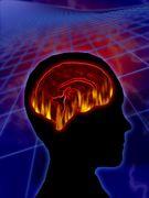 funciona correctamente tu cerebro
