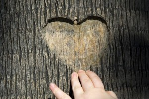 enigma de amor
