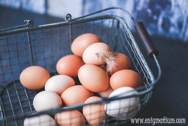 enigma_huevos